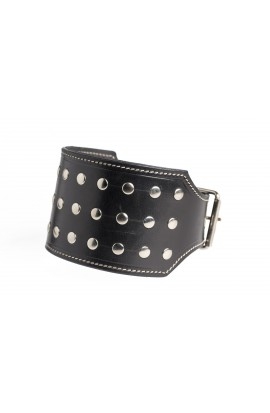 Double leather dog collar with rivets